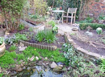 Not much growth, lots of bare soil, in the garden