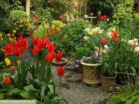 garden-view-280414.jpg