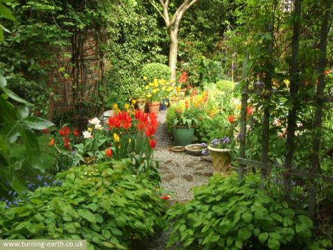 garden-view-from-window-280414.jpg