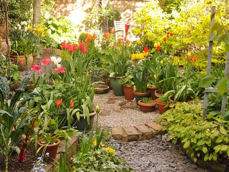 Garden view, 12 April 2017